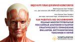 Уникальный многоуровневый системный видео-курс «Как работать без осложнений: полная многоступенчатая послойная анатомия в разрезе практического применения филлеров, ботулинических токсинов и нитей»